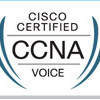Top 5 VoIP Concepts to Know for CCNA Voice—VoIP Basic for CCNA Voice Exam