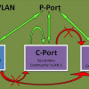 How Private VLANs Work?