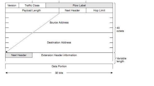 an IPv6 Header followed by Extension Header