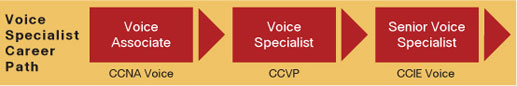 Cisco CCNA Voice Certification