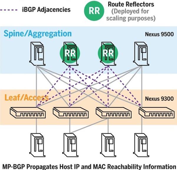 Cisco BGP VXLAN (2)