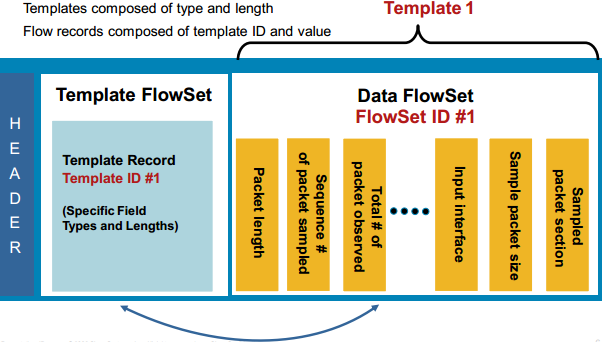 NetFlow-lite-Export Format