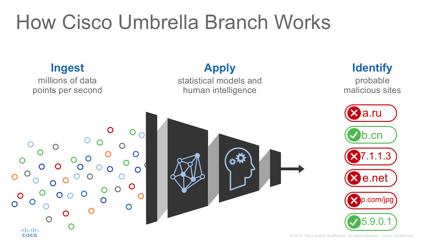 Cisco Umbrella Branch-04