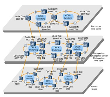 Typical OTN networking of OptiX OSN 8800
