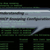Understanding DHCP Snooping Configuration