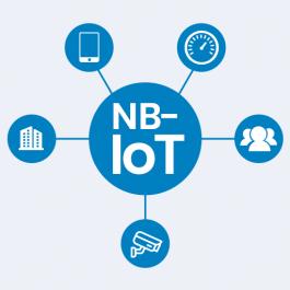 NB-IoT vs. LoRa: Collaborators, not Competitors