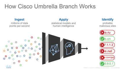 Cisco Umbrella Branch-04